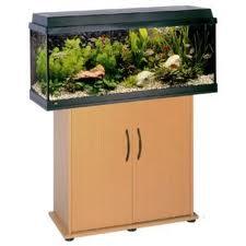 Juwel aquarium | Aquariums, overzicht aquaria van Juwel!